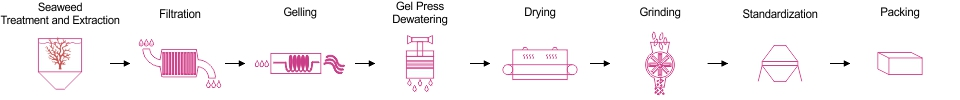 Gel Press Production Process
