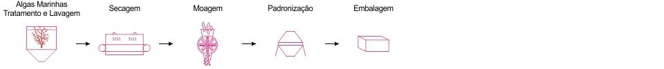 Processo de produção Método Padrão